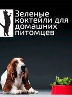 Зеленые коктейли для домашних животных
